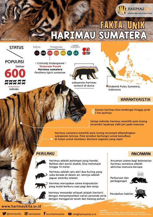 FHK_Fakta Unik Harimau Sumatera_A4